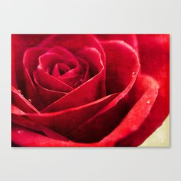 Painted Red Canvas Print