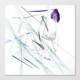 Diamond in the Rough Canvas Print