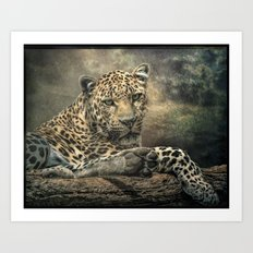 The Night of The Leopard Art Print
