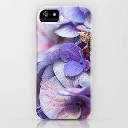 Farbenrennen..  iPhone Case