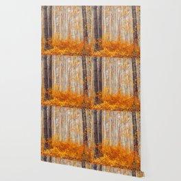 Golden Autumn Forest (Color) Wallpaper