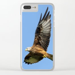 Red Kite soaring Clear iPhone Case