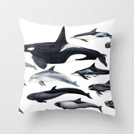 Delphinidae: Dolphin family Throw Pillow