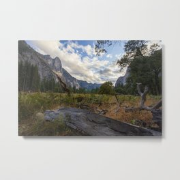 In the Valley. Metal Print