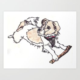 Brodie the Jack Russell Art Print