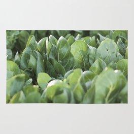 Food photography, macro photo, nature fine art, Italy, Sicily, Apulia, kitchen wall Rug