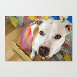 Goin' to the Carnival Canvas Print