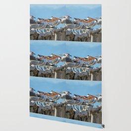 Birds on a dock Wallpaper