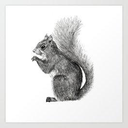 Squirrel in Pen Art Print