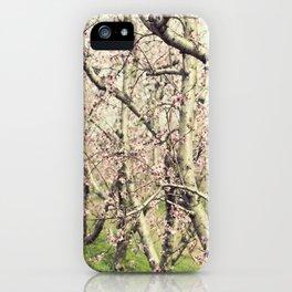 Peach Trees iPhone Case