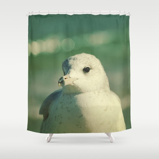 Seagull Close Up Shower Curtain