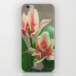 Vintage tulips 7 iPhone Skin