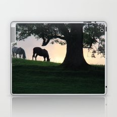Yorkshire Sunset Laptop & iPad Skin