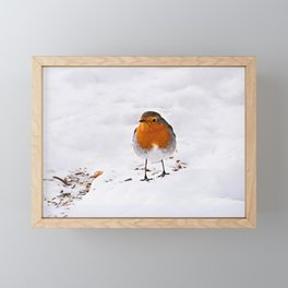 Cute red Robin bird in snow Framed Mini Art Print