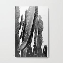 Boho Cactus Metal Print