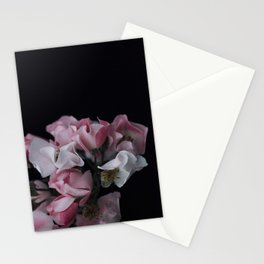 Margaux Stationery Cards