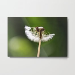 My Interrupted Wish Metal Print