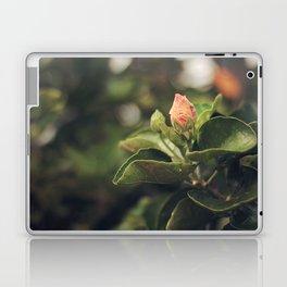 Capullo de Hibisco - Hibiscus bud Laptop & iPad Skin