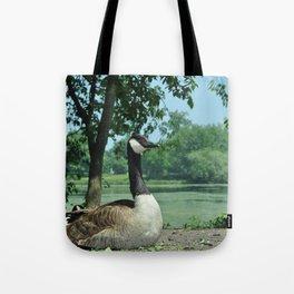 Deluxe Ducks #16 Tote Bag