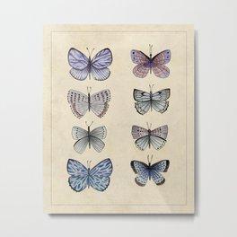 Vintage butterflies collection Metal Print