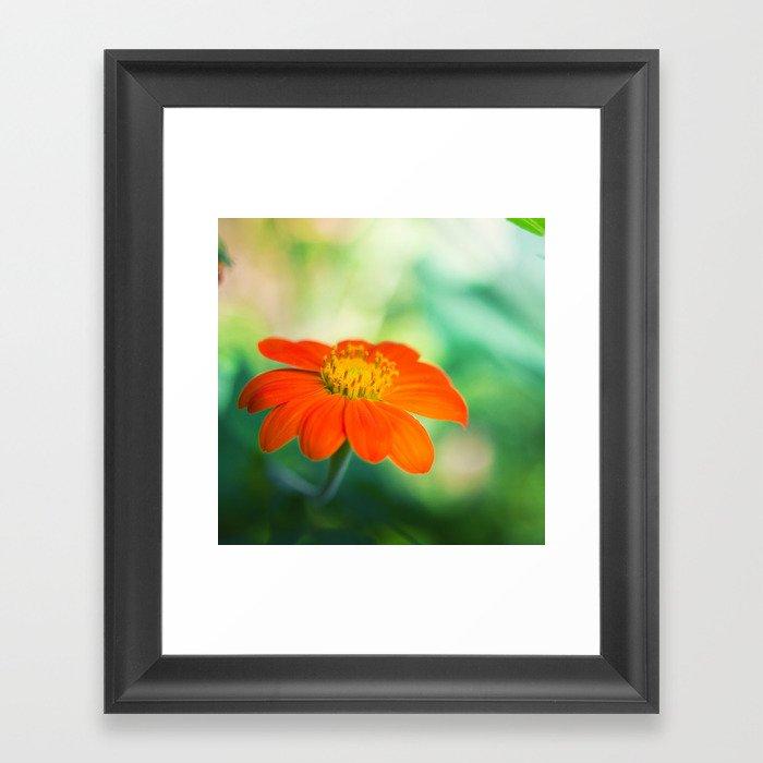 Dear Spring Framed Art Print