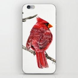 Winter Cardinal On White iPhone Skin