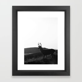 deer14 Framed Art Print