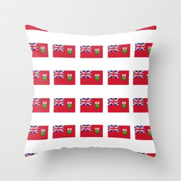 Flag of ontario -ontarian,ontarien,toronto,ottawa,heartland,huron,hamilton. Throw Pillow