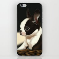 puppy iPhone & iPod Skins featuring Puppy by EliseBrave