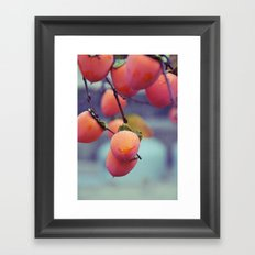 Persimmons in the Rain Framed Art Print