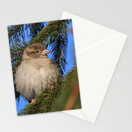 Bird in winter Stationery Cards