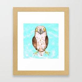 Cute hawk Framed Art Print