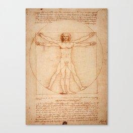 Vitruvian Man (c. 1490) Canvas Print