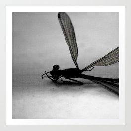MINUTIAE / 02 Art Print