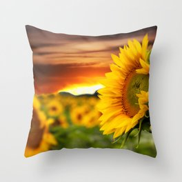 Sunrise over the Sunflowers Throw Pillow