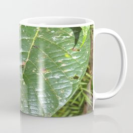 Large tropical leave from El Verde - El Yunque rainforest PR Coffee Mug