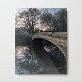 Central Park 5 Metal Print