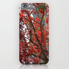 Japanese Maple Slim Case iPhone 6s