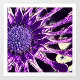 African Daisy in Manipulated Purple Art Print