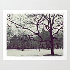 Cold Day Art Print