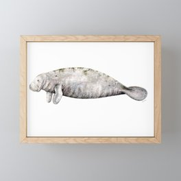 Manatee Framed Mini Art Print