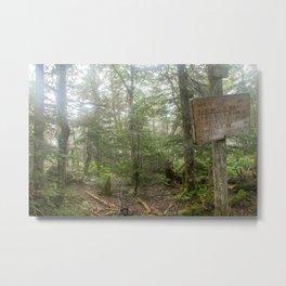 Fraconia ridge trail (AT) Metal Print