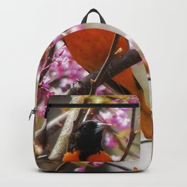 Baltimore Oriole Backpack