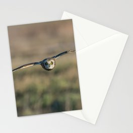 PANNING PHOTOGRAPHY OF OWL FLYING Stationery Cards