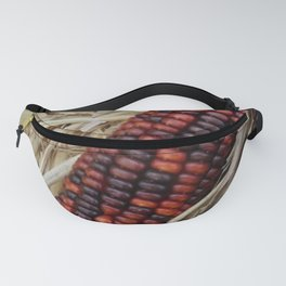 Indian Corn, Autumn New England / Rhode Island color photography / photographs  Fanny Pack