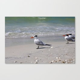 Sweet Summertime Canvas Print
