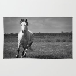 Running Horse Rug