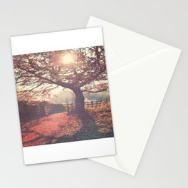Sunlight shines through silhouetted tree. Stationery Cards