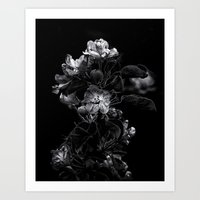 Backyard Flowers In Black And White 4 Art Print