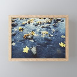 Autumn Leaves, Color Film Photo, Analog Framed Mini Art Print